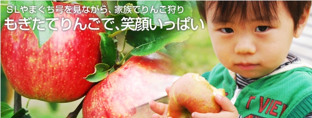 園 徳佐 りんご » 村本